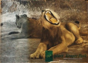 60Years Kruger Park