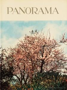 Panorama - Revista Portuguesa de Arte e Turismo - n.º 5 - IV Série - 1963 «€15.00»